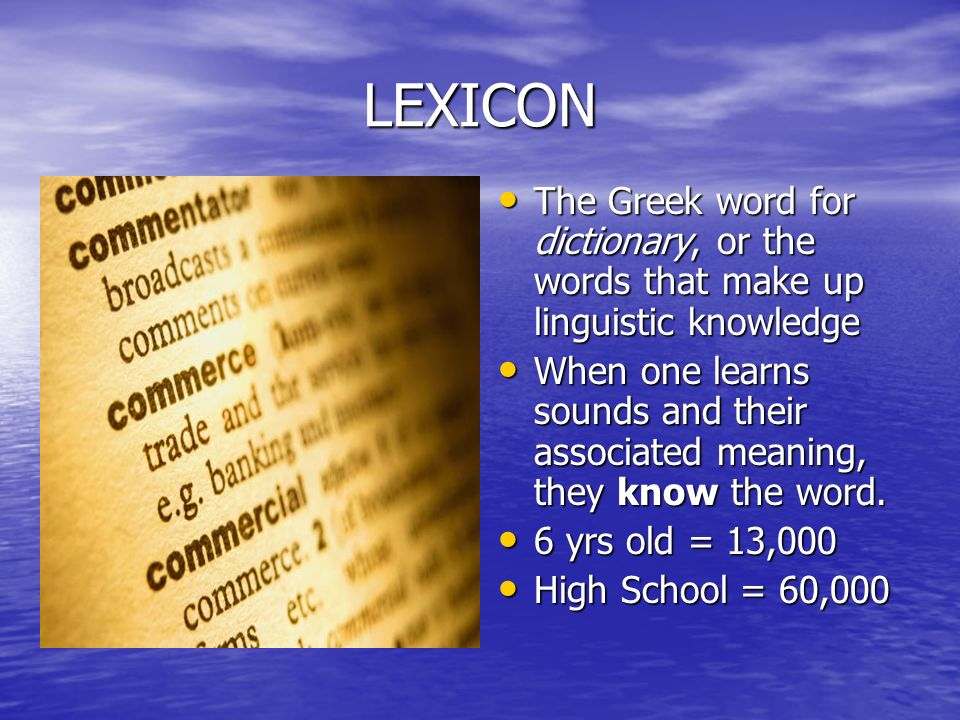 lexicography the process of creating a dictionary Lexicography definition, the writing, editing, or compiling of dictionaries see more  but only two independent contributions to the development of lexicography were made in the earlier half of the nineteenth century  the process or profession of writing or compiling dictionaries show more.
