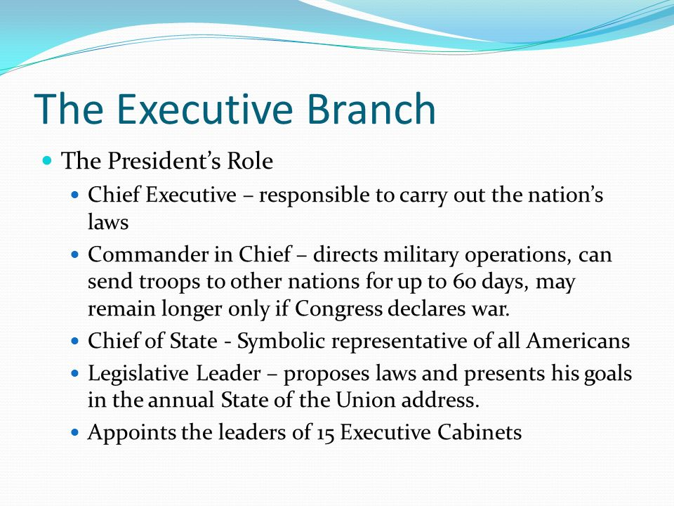 The Executive Branch The President's Role