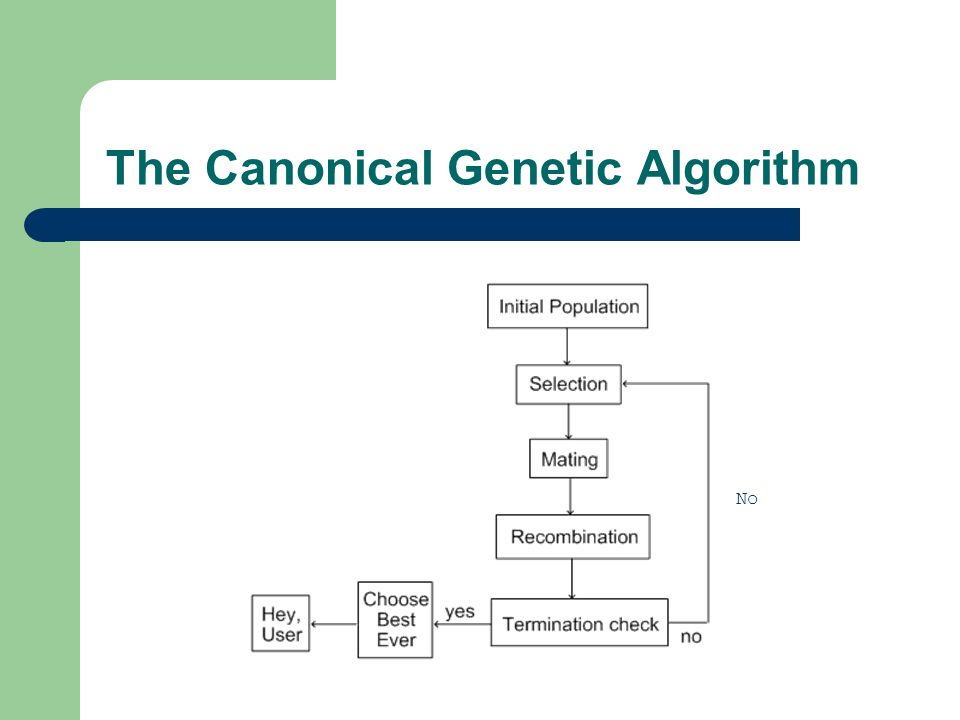 The Canonical Genetic Algorithm