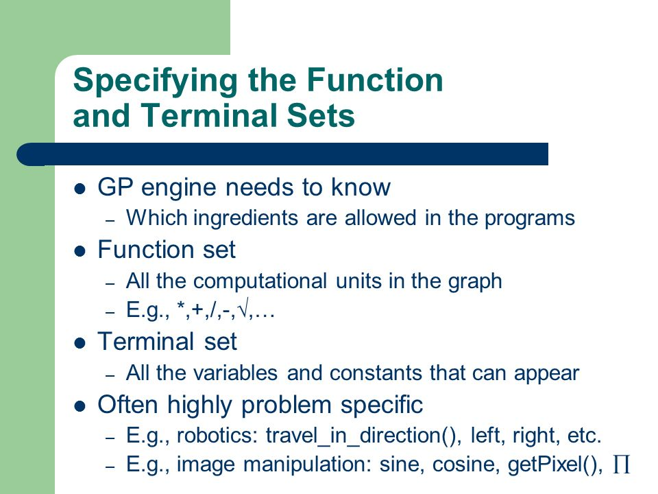 Specifying the Function and Terminal Sets