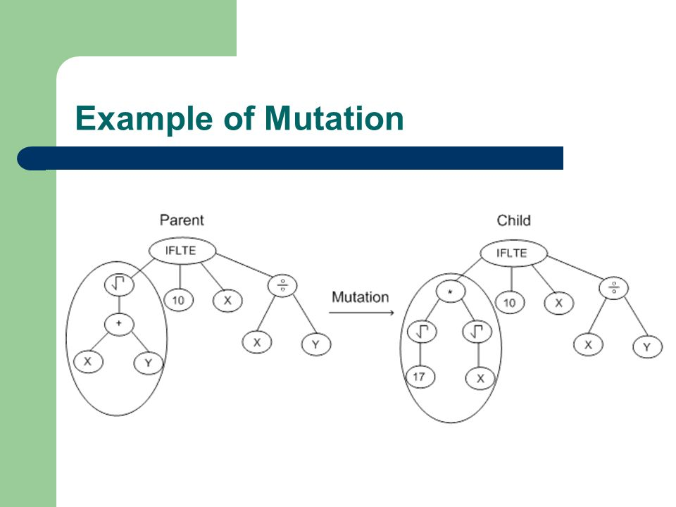 Example of Mutation