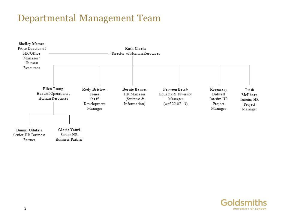 Departmental Management Team