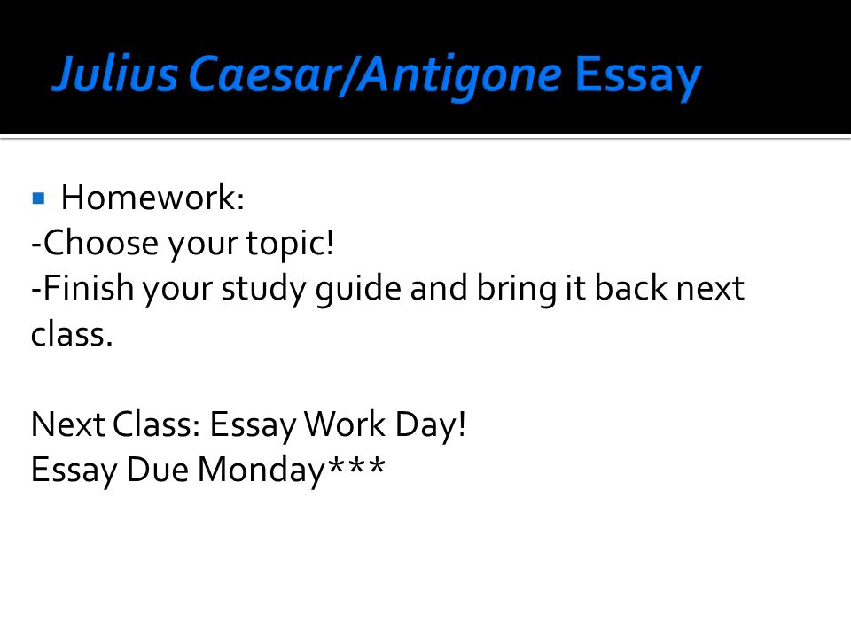 antigone mock trial essay