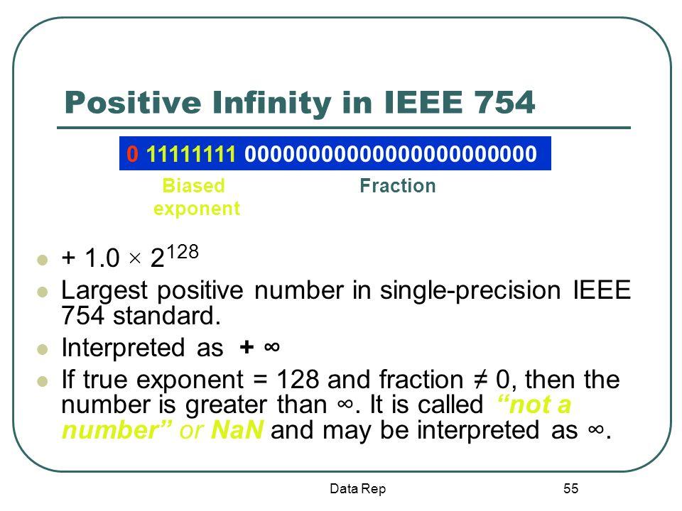 Positive Infinity in IEEE 754