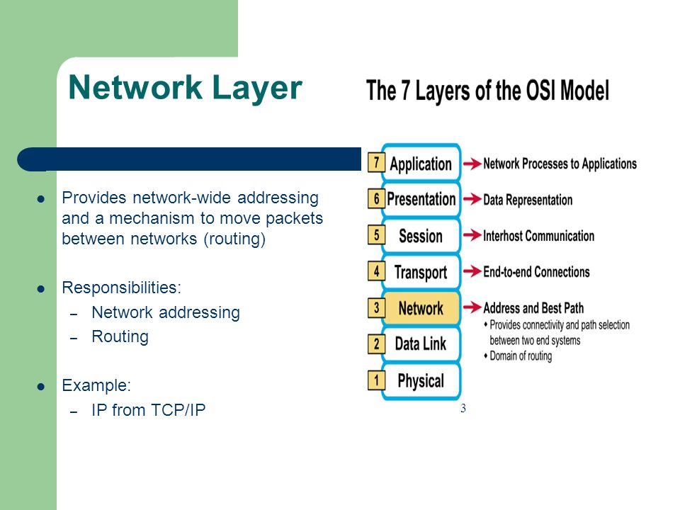 Network Layer Provides network-wide addressing and a mechanism to move packets between networks (routing)