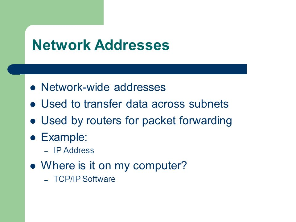 Network Addresses Network-wide addresses