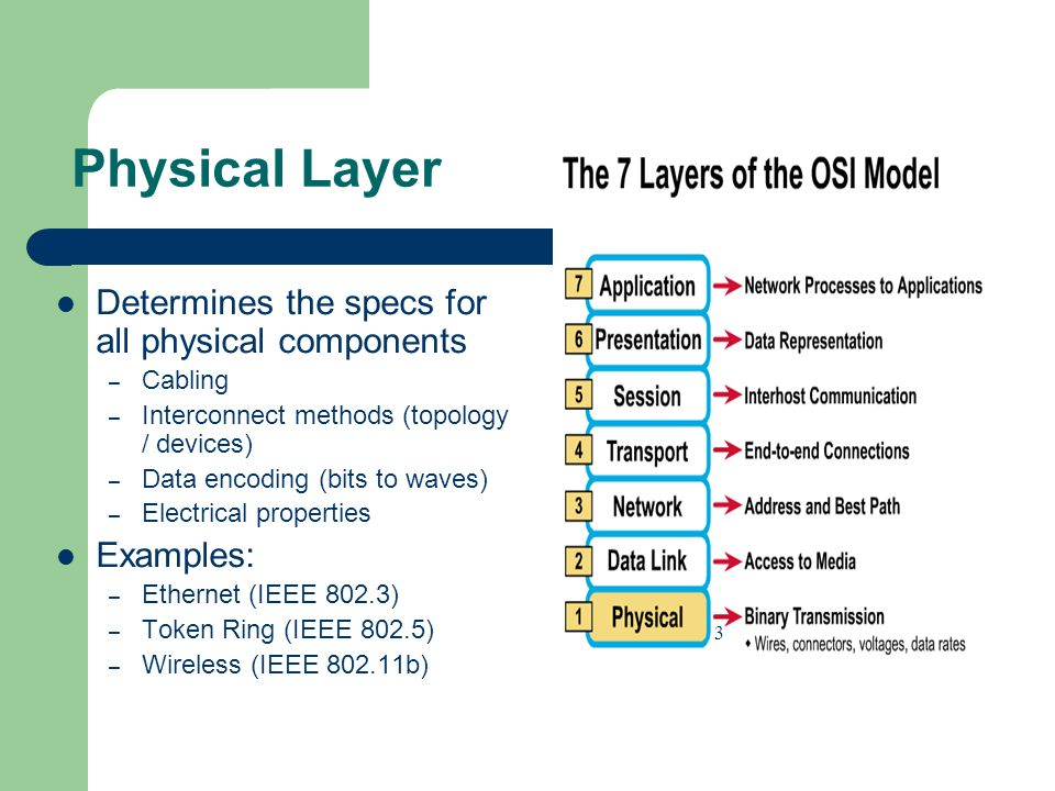 Physical Layer Determines the specs for all physical components