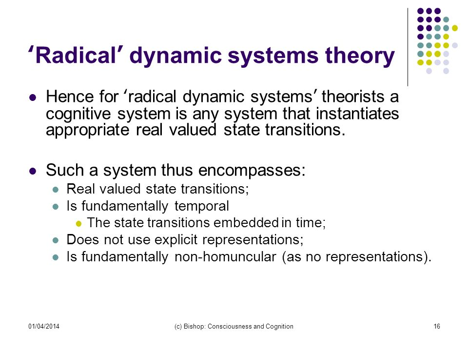 'Radical' dynamic systems theory