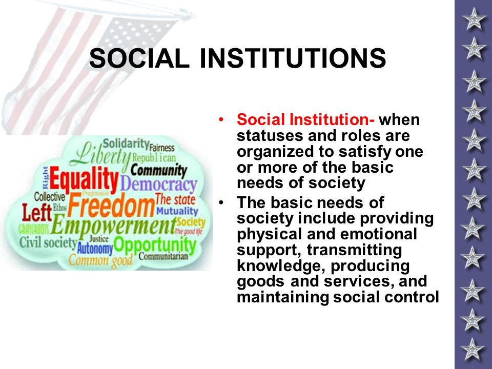 SOCIAL INSTITUTIONS Social Institution- when statuses and roles are organized to satisfy one or more of the basic needs of society.