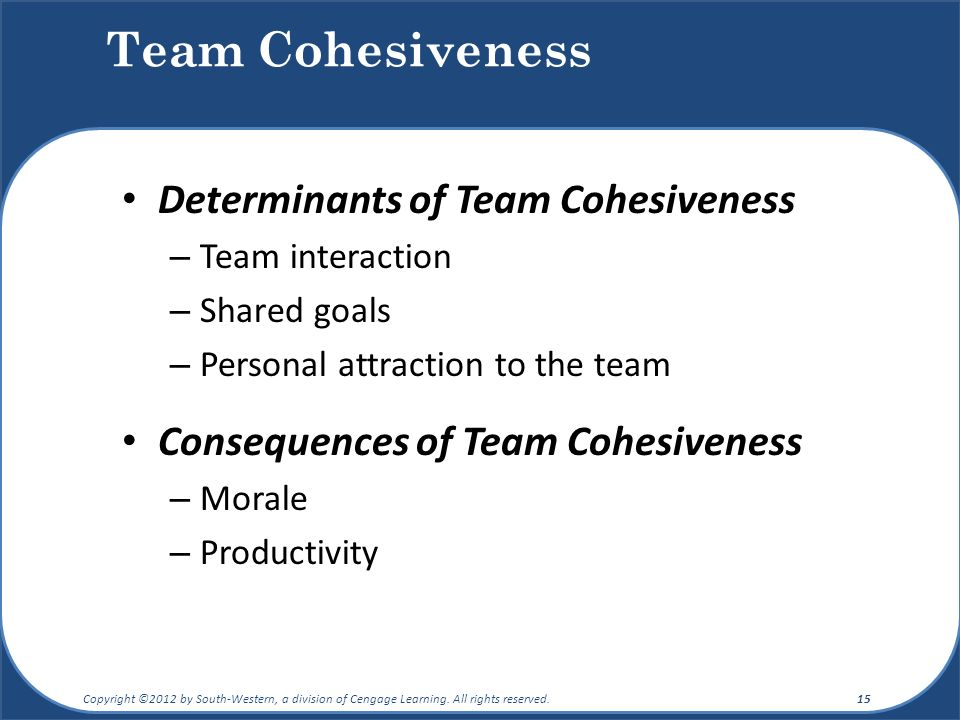 Team Cohesiveness Determinants of Team Cohesiveness