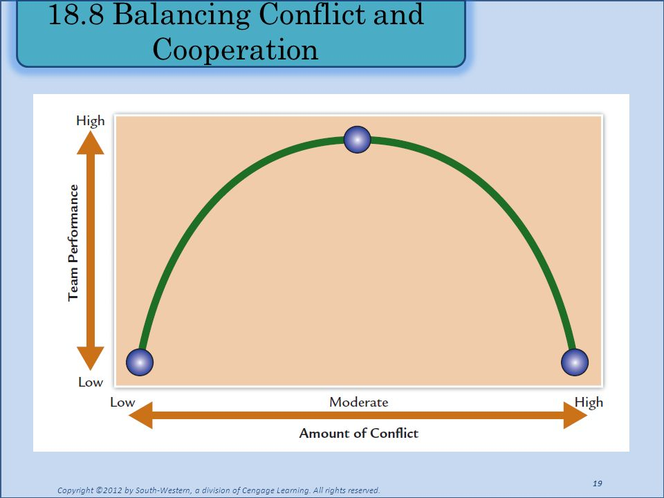 18.8 Balancing Conflict and Cooperation