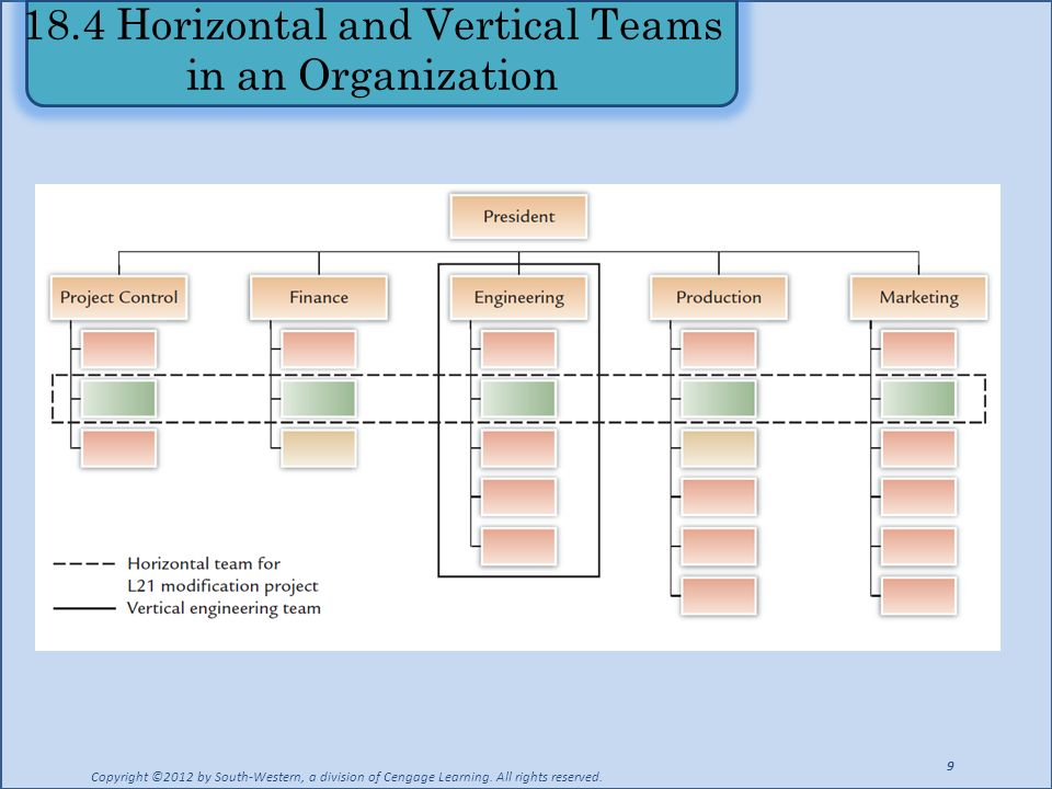 18.4 Horizontal and Vertical Teams in an Organization