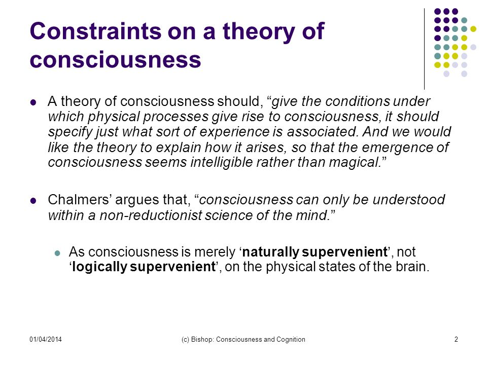 Constraints on a theory of consciousness