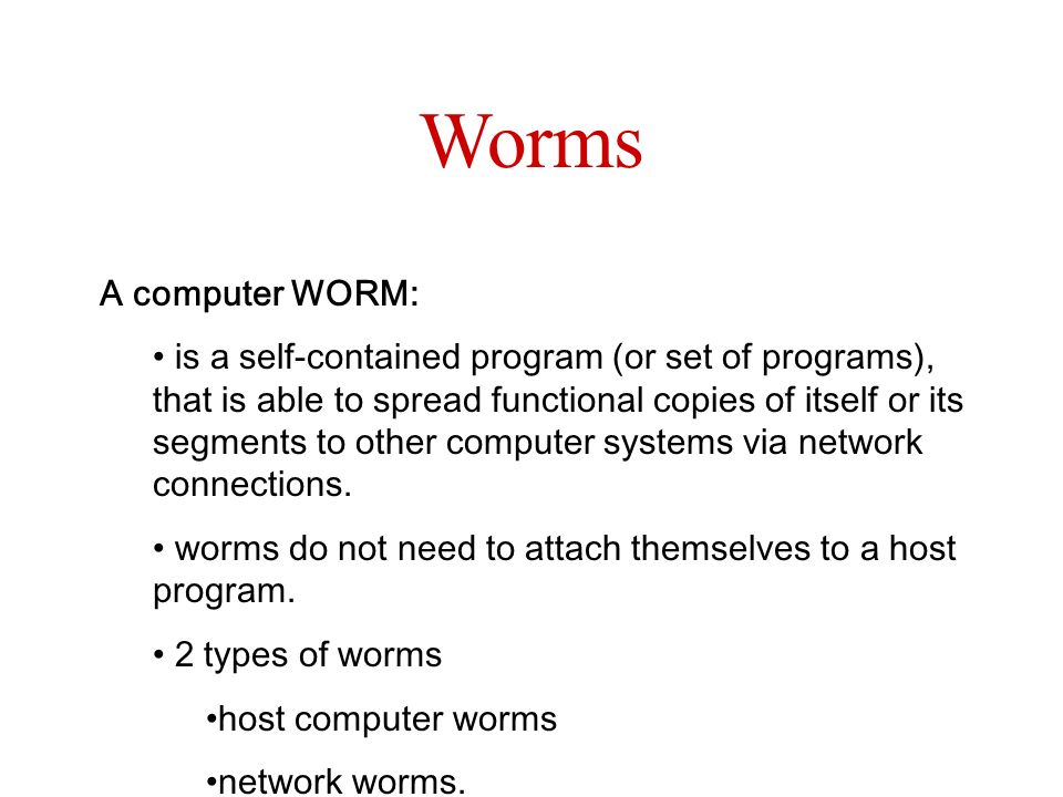 Worms A computer WORM: