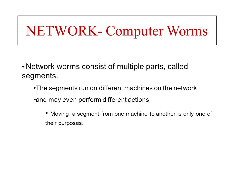 NETWORK- Computer Worms