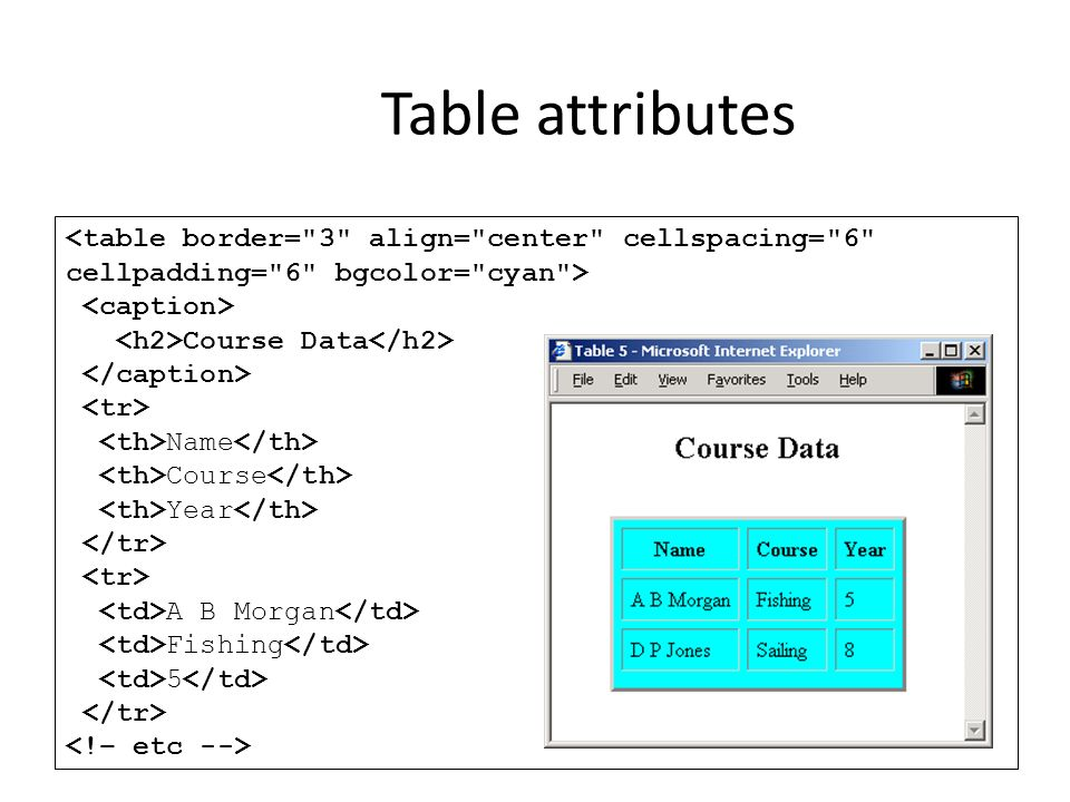 Hypertext markup language ppt download for Table tag attributes in html