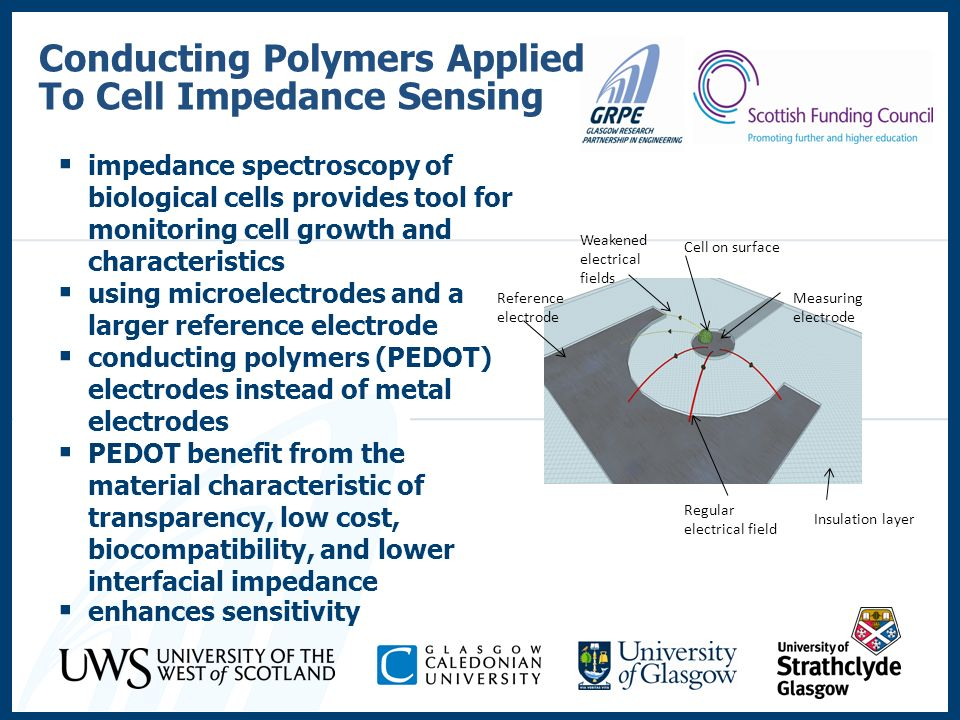 Conducting Polymers Applied To Cell Impedance Sensing