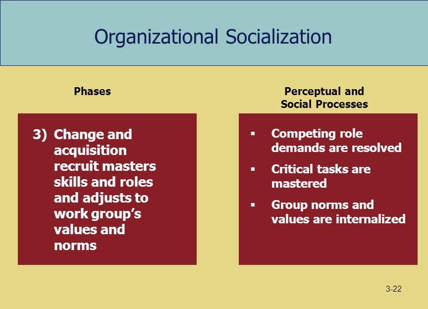 anticipatory socialization work Anticipatory socialization quick reference adoption of attitudes and values of a group to which one does not belong, serving the twin functions of facilitating a move into that group and easing the process of adjustment after becoming a member of it.