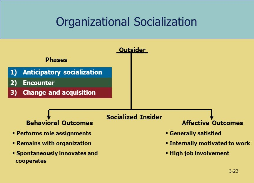 On culture and socialization