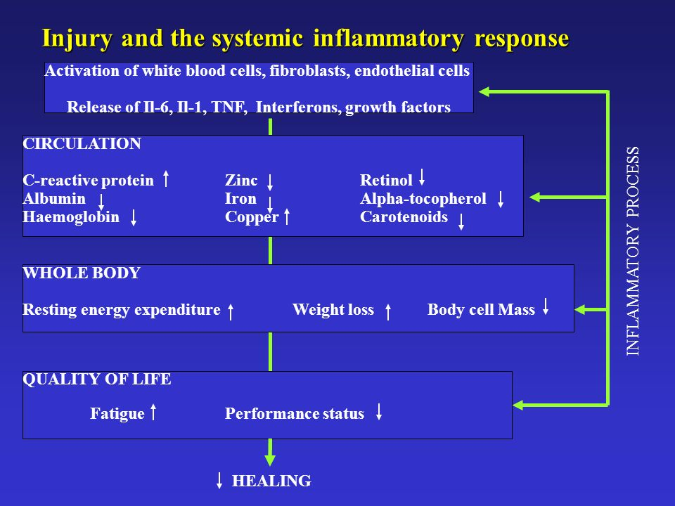 Release of Il-6, Il-1, TNF, Interferons, growth factors