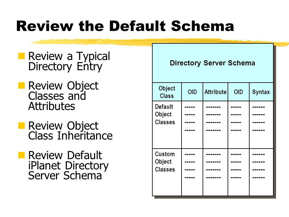 Review the Default Schema
