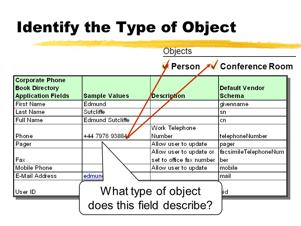 Identify the Type of Object