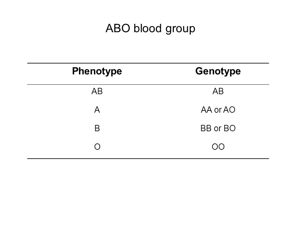 ABO blood group Phenotype Genotype AB A AA or AO B BB or BO O OO