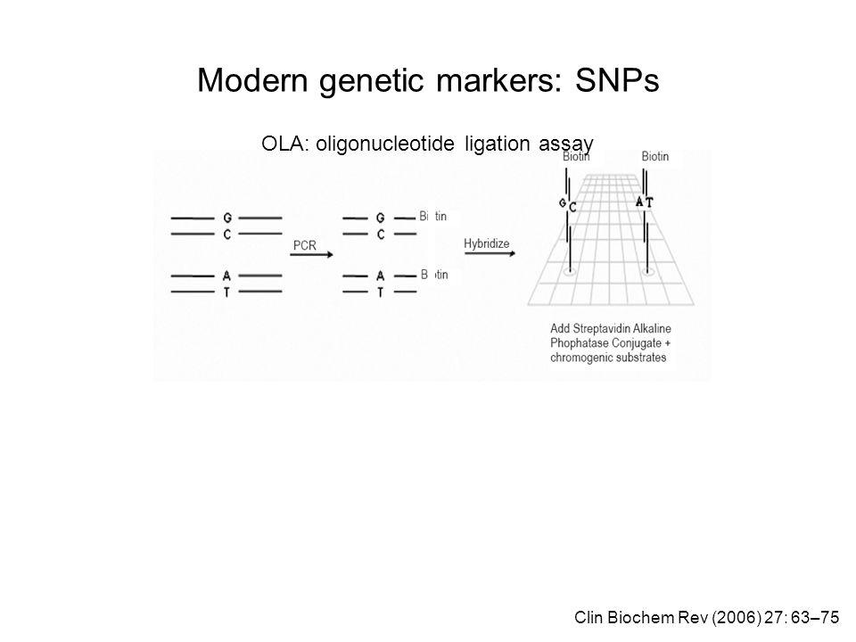 Modern genetic markers: SNPs