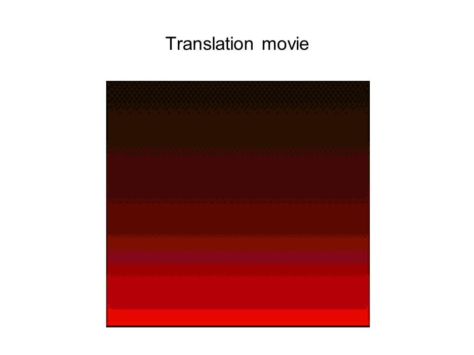 Translation movie