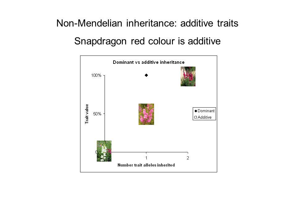 Non-Mendelian inheritance: additive traits