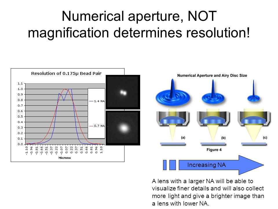 Numerical aperture, NOT magnification determines resolution!
