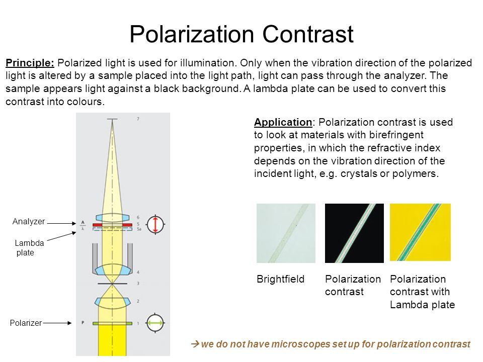 Polarization Contrast