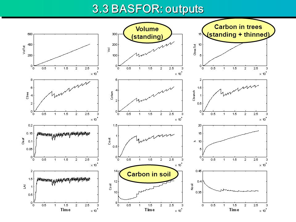 3.3 BASFOR: outputs Carbon in trees Volume (standing + thinned)
