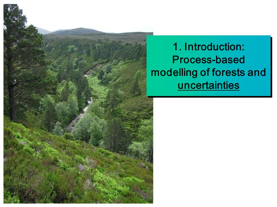 1. Introduction: Process-based modelling of forests and uncertainties