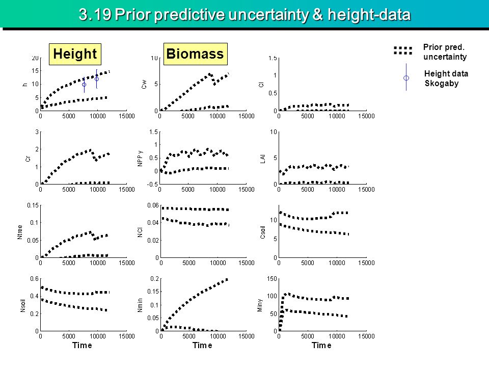 3.19 Prior predictive uncertainty & height-data