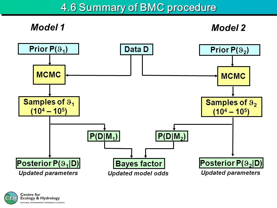 4.6 Summary of BMC procedure