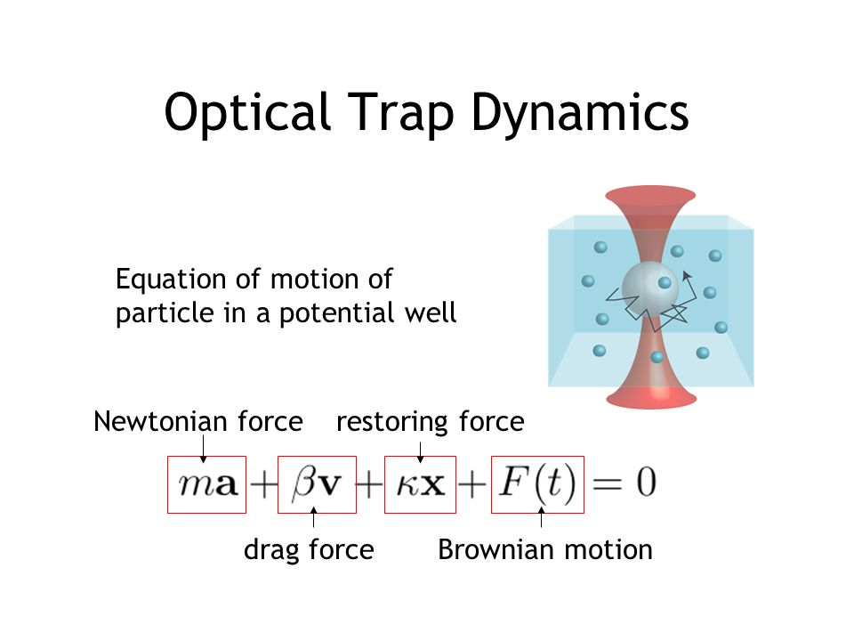 Optical Trap Dynamics Equation of motion of