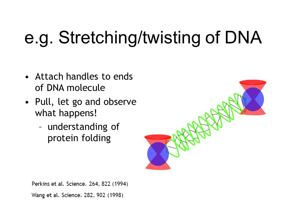 e.g. Stretching/twisting of DNA
