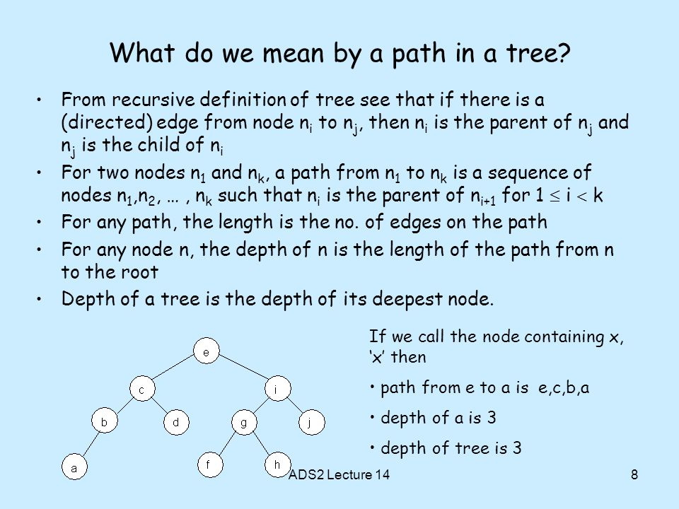 What do we mean by a path in a tree