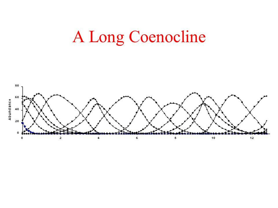 A Long Coenocline