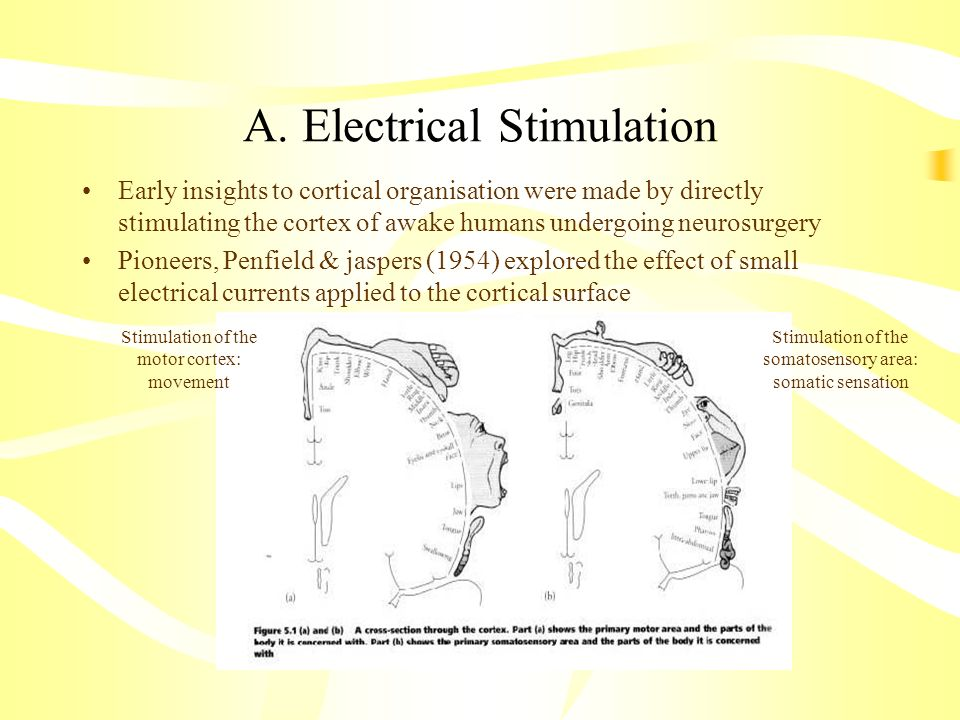 A. Electrical Stimulation