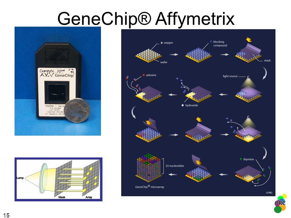 GeneChip® Affymetrix