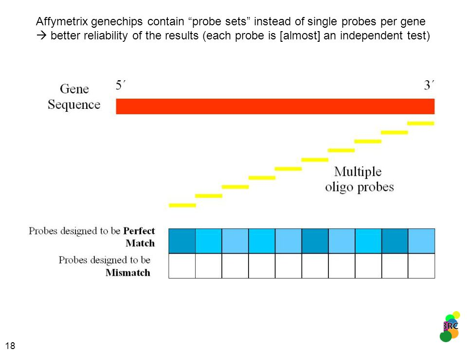 Affymetrix genechips contain probe sets instead of single probes per gene  better reliability of the results (each probe is [almost] an independent test)