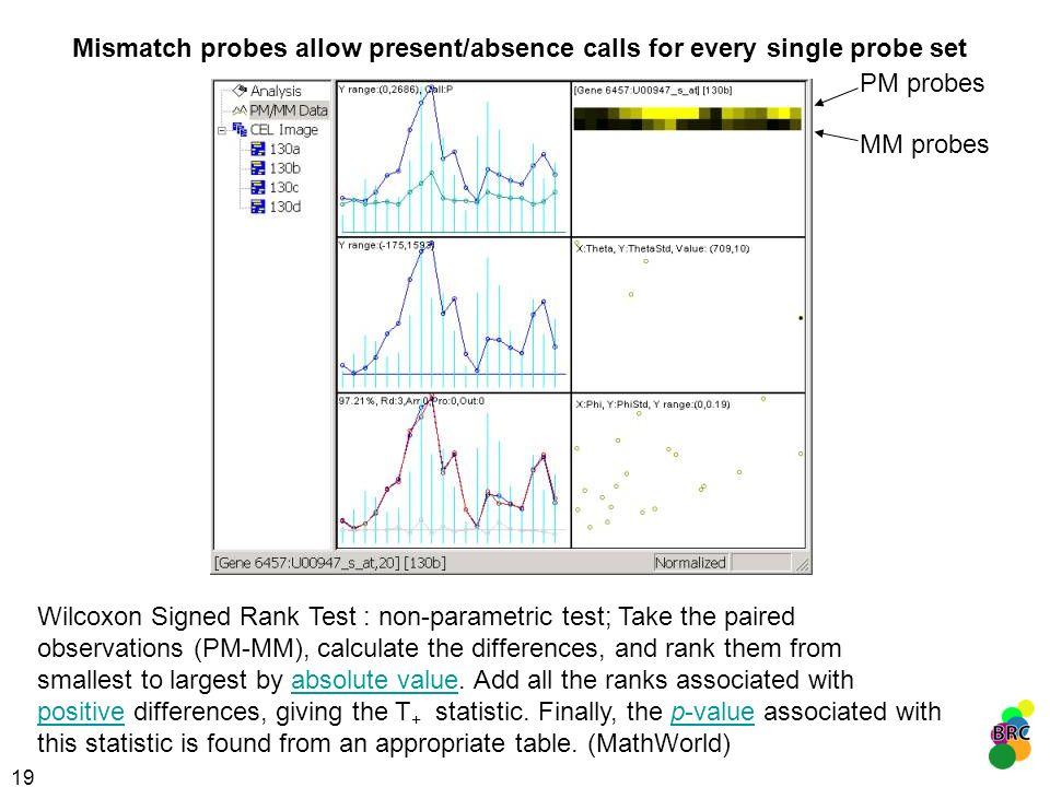 Mismatch probes allow present/absence calls for every single probe set