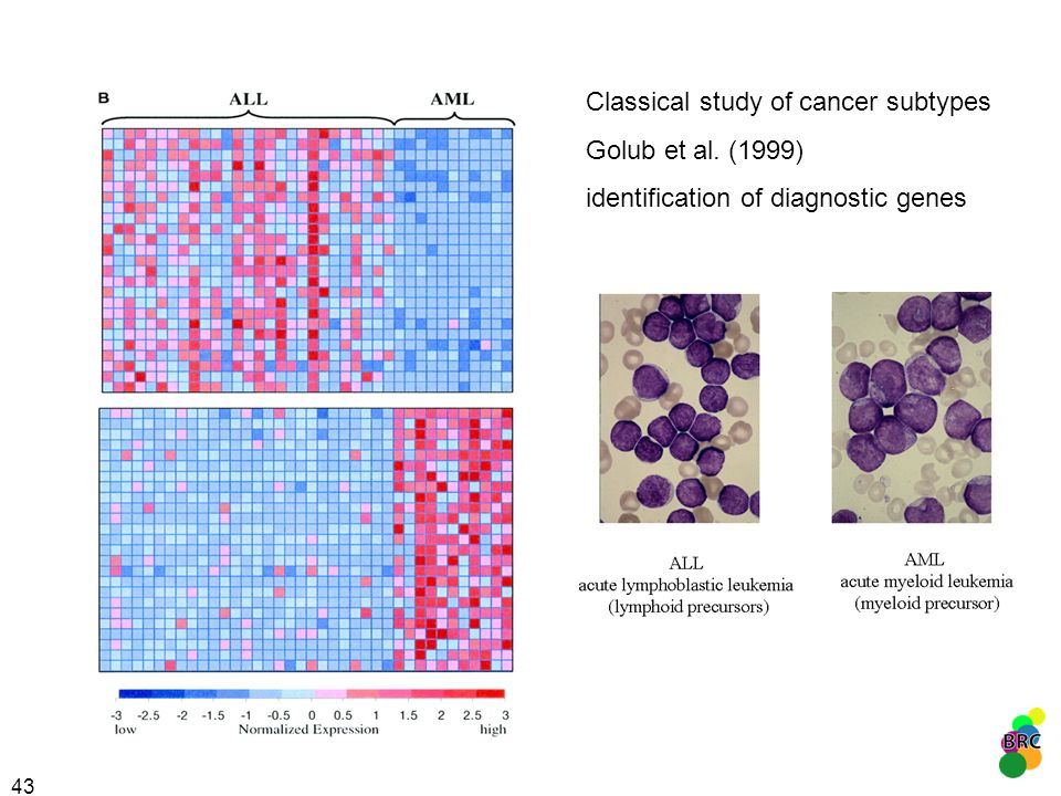 Classical study of cancer subtypes