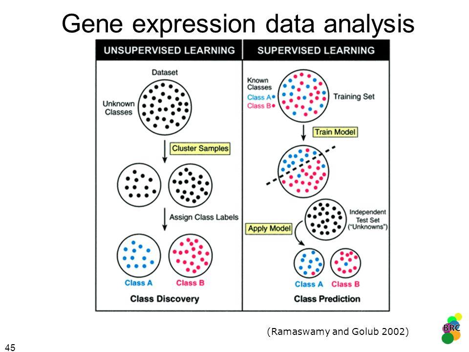 Gene expression data analysis