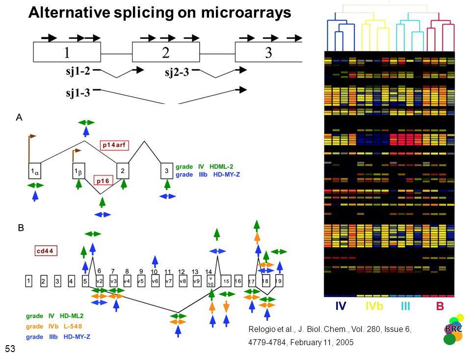 Alternative splicing on microarrays