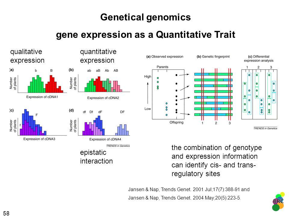 gene expression as a Quantitative Trait
