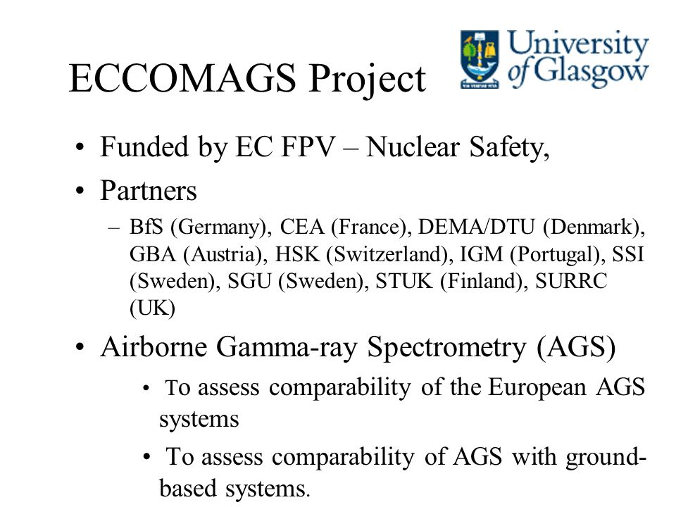 ECCOMAGS Project Funded by EC FPV – Nuclear Safety, Partners