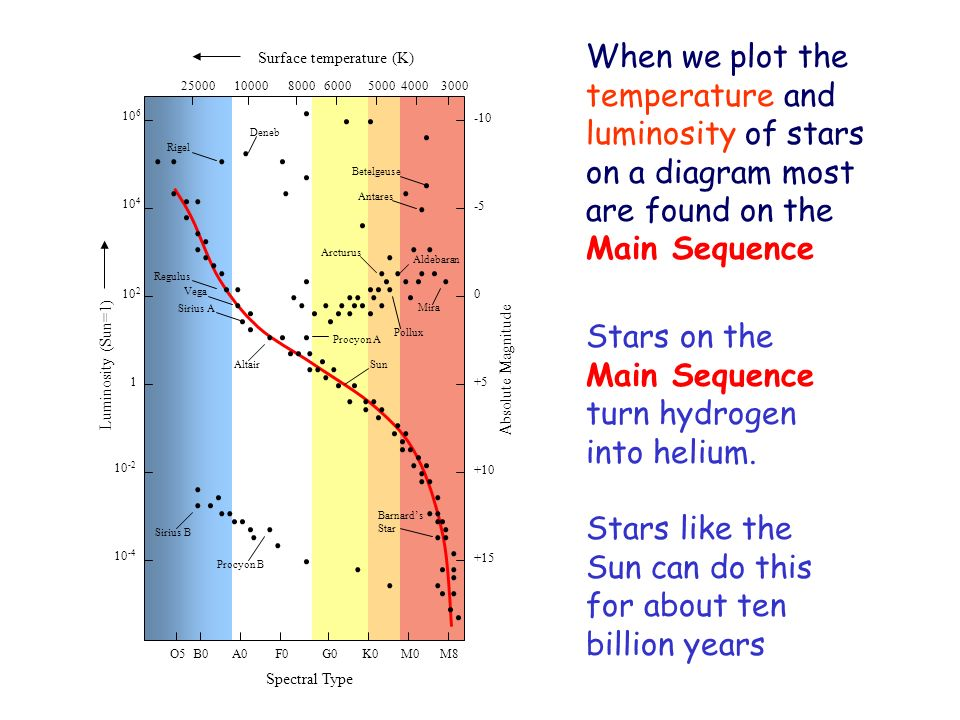Main Sequence turn hydrogen into helium.